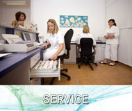 Service / Organisation