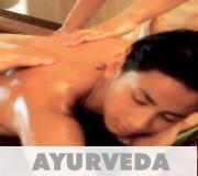 Bio-Ayurveda Massage-Öl