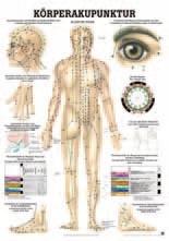 Körperakupunktur 70 x 100 cm